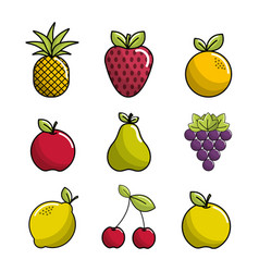 Natural fruit background icon vector