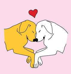 retriever dogs lovely couple vector image
