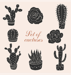 Set of cactuses and succulents vector