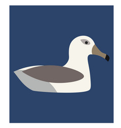 Swimming seagull flat on white vector
