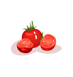 whole tomato and two halves juicy and fresh vector image