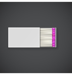 Box of matches with pink head vector
