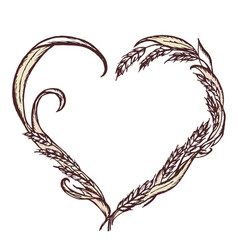 Ears of wheat hand-drawn in the shape of heart vector