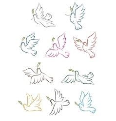 Flying doves with olive branch vector image