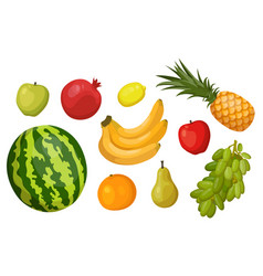 fruits banana watermelon apple pear grape vector image