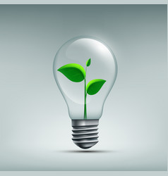 icon plant with leaves growing in a bulb vector image