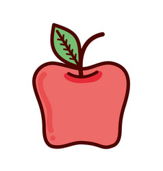 red delicious apple healthy fruit vector image