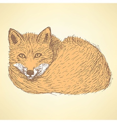 Sketch cute fox in vintage style vector