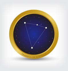 Triangulum australe constellation in golden circle vector
