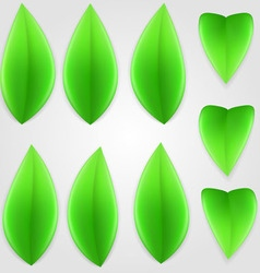 Natural leaf 01 vector image vector image