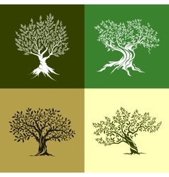 Olive trees icon set vector