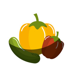 cucumber yellow pepper and red pepper vegetable vector image
