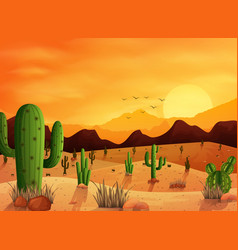 desert landscape background with cactuses vector image
