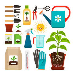 Houseplants and indoor gardening icons vector