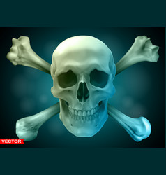 photorealistic human skull with crossed bones vector image