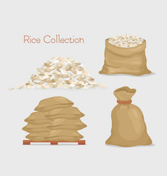 rice collection bags with vector image