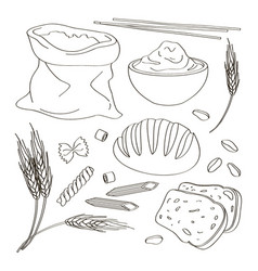 set of food products from wheat and flour vector image