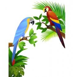 macaw vector vector image