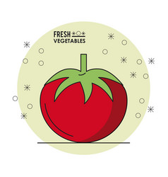 colorful poster of fresh vegetables with tomato vector image vector image