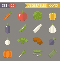 Vegetables Symbols Healthy and Healthsome Food vector image