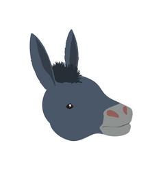 Donkey farm animal vector