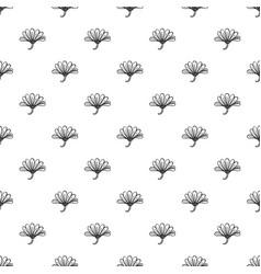 herb calendula pattern seamless vector image