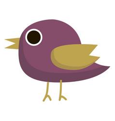 purple bird on white background vector image