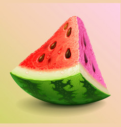 Watermelon piece vector