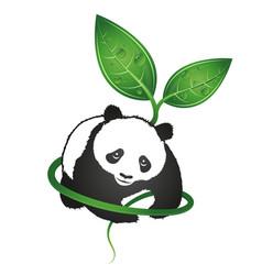 panda eco symbol vector image