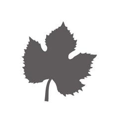 leave grape tree design vector image