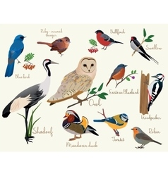 Bird icons colorful realistic birds icons set vector
