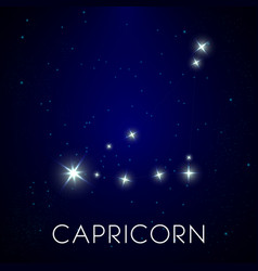 Constellation capricorn zodiac sign in night vector