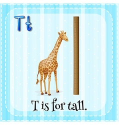 Flashcard letter T is for tall vector