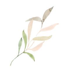 Gentle leaves pastel watercolor hand painted vector