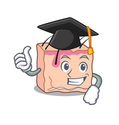 Graduation skin character cartoon style vector