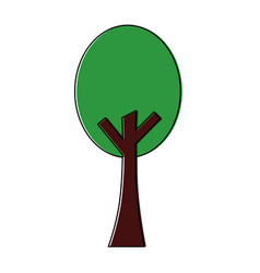 green tree nature forest plant image vector image