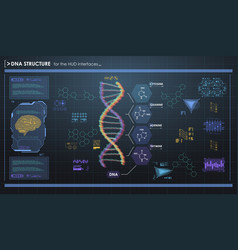 hud infographic elements with dna structure vector image