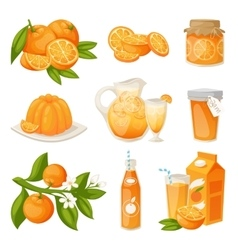 Orange products set vector image