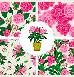 Pink flower icon and patterns set vector