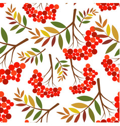 Rowan pattern vector