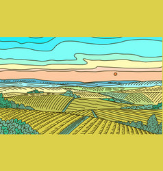 Rural mountain landscape farm field or vineyard vector