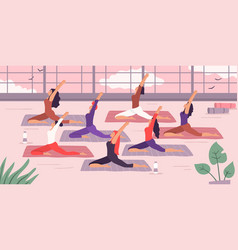 Women yoga group stretching exercise vector