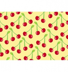 cherry background vector image vector image