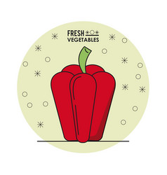 colorful poster of fresh vegetables with red vector image vector image