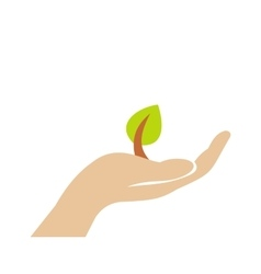 Sprout in hand flat icon vector image