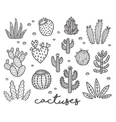 Ink collection with cactuses vector