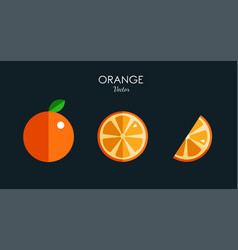 orange citrus icons modern flat style vector image