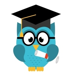 Owl bird cute with hat graduation icon vector