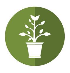 Pot plant garden shadow vector