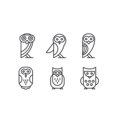 set of 6 different owl forest bird simple vector image